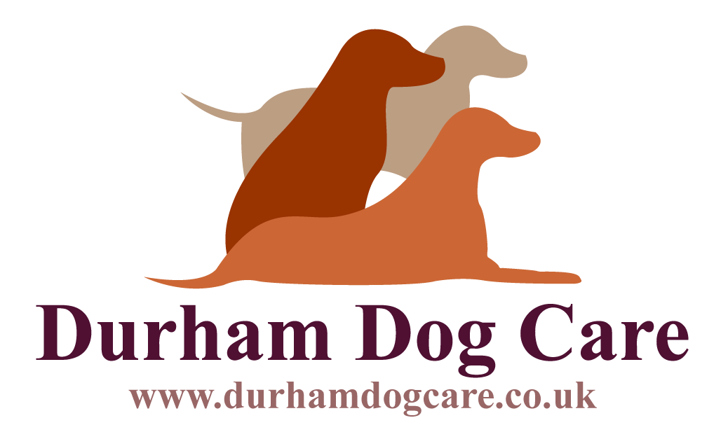 Durham Dog Training